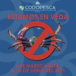 CODOPESCA informa de la veda del cangrejo desde el 1ero de marzo hasta el 30 de junio